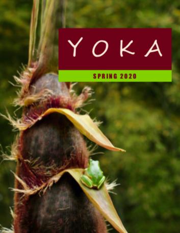 http://kumamotojet.com/documents/YOKAs/2020SpringYOKA/YokaSpring2020.pdf